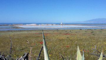 21-04-01 Salinas de Cabo de Gata 04